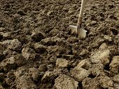 picture of grub  - shovel in the ploughed ground - JPG