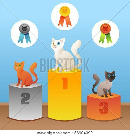 Cats winner