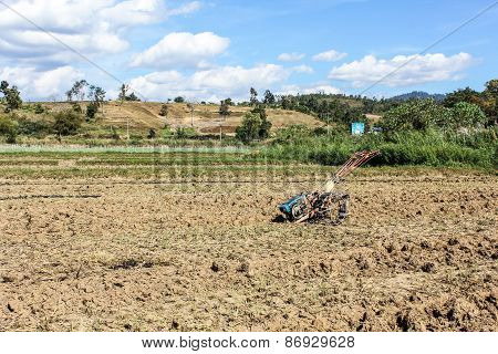 Tiller Tractor In Rice Field