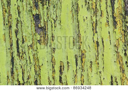 Old Shabby Wooden With Cracked Color Paint