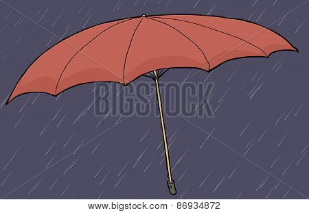 Red Umbrella In Rain