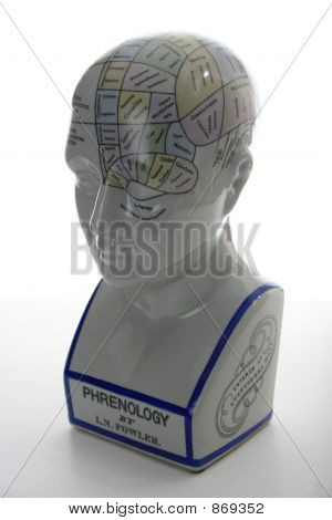 Phrenology Head Chart