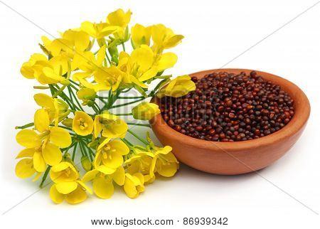 Mustard Flowers And Oil