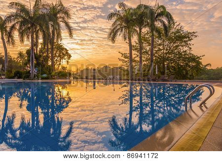 Luxury Swimming Pool With Plam Tree At During Sunrise