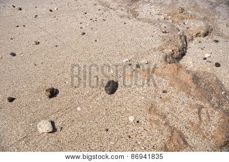 Background From Wet Sand And Stones