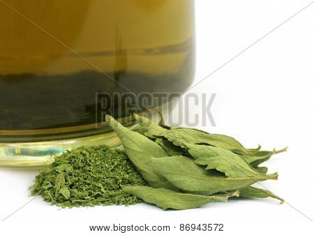 Tea With Dired Stevia Leaves