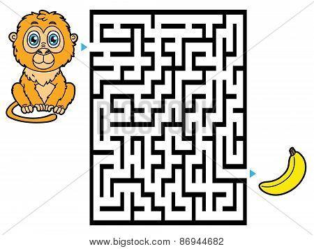 Monkey labyrinth