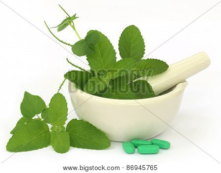 Medicinal Herbs On Mortar With Pestle And Pills