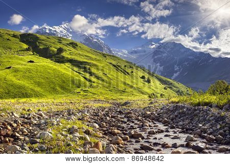 Alpine Meadows At The Foot Of Tetnuldi Glacier