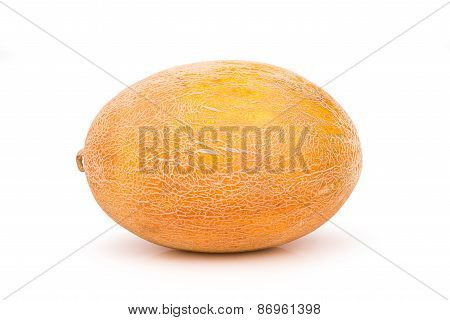 Ripe Juicy Melon Uncut