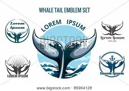 Whalw Tail Set