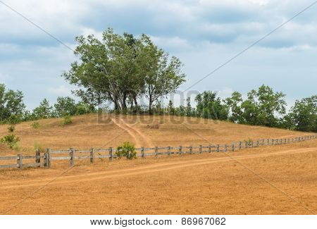 Grass Hill Or Bald Hill In Thailand