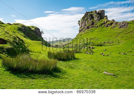 The green Fairy Glen, Scotland