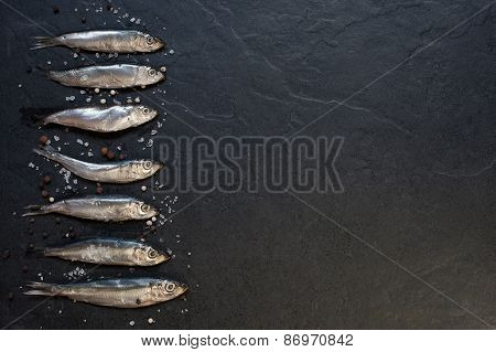 Small Fishes With Salt And Pepper On The Table