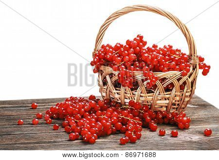 Fresh Berries Red Currant In A Basket Isolated