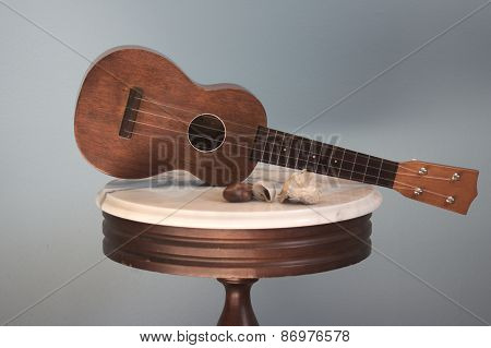Antique Ukulele and Sea Shells