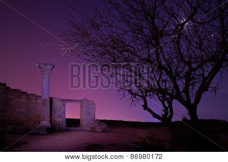 Lonely Tree Under Blue Night Sky