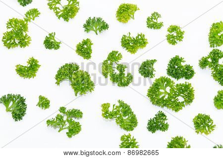 Fresh Parsley Arranged In A Pattern Isolated On White Background