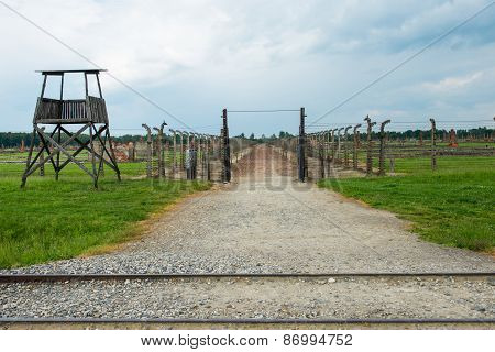 Railroad In Auschwitz