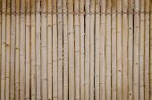 image of bamboo  - the old bamboo wall background - JPG
