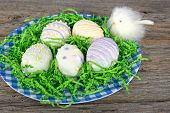 stock photo of baby easter  - Baby chick with Easter egg cookies in green paper grass - JPG