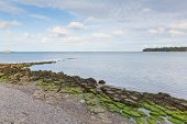 image of node  - View from Nodes Point St Helens Isle of Wight near Bembridge - JPG