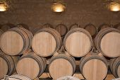 stock photo of wine cellar  - The Wine cellar with barrels in stacks - JPG
