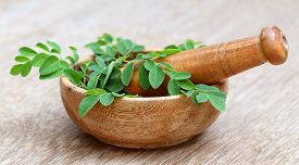 picture of malunggay  - Close up of Moringa leaves with mortar and pestle - JPG