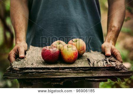 Farmer With Apples