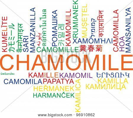 Background concept wordcloud multilanguage international many language illustration of chamomile