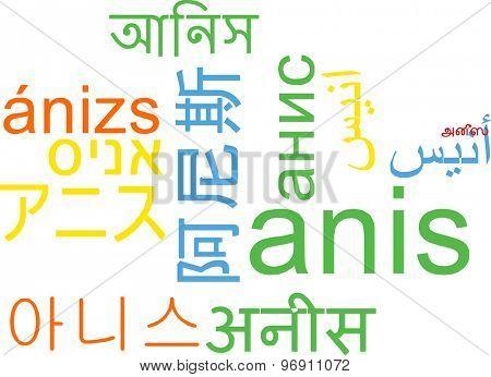 Background concept wordcloud multilanguage international many language illustration of anis
