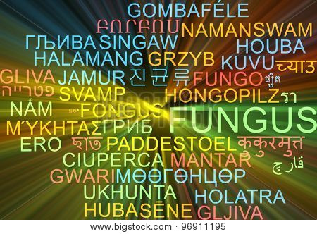 Background concept wordcloud multilanguage international many language illustration of fungus glowing light
