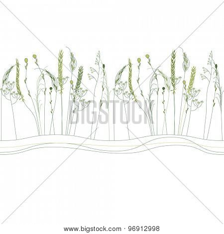 Seamless pattern brush with herbs and wild flowers isolated on white. Endless horizontal texture for your design