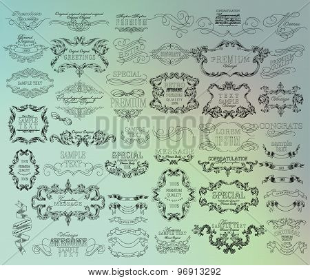 Set of hand-drawing calligraphic floral design elements.