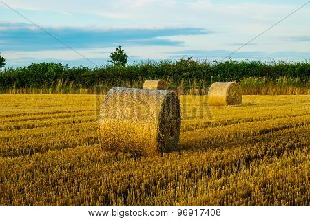 straw bales in a field at sunset