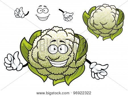 Fresh isolated cartoon cauliflower vegetable