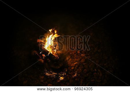 magic Bonfire