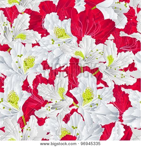 Seamless Texture Red And White Rhododendron  Vector