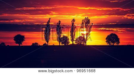 Vintage Photo Of Vibrant Sunset Over Field
