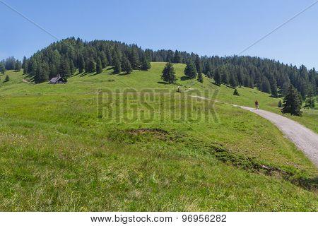 Path through rural mountain landscape in summer near Walderalm Austria Tirol