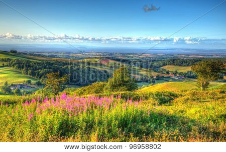 Somerset countryside Quantock Hills view to Hinkley Point Nuclear Power station and