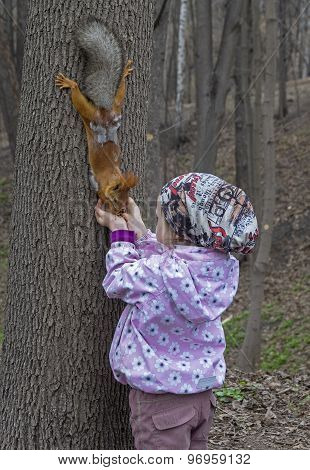 Little Girl Feeds A Squirrel.