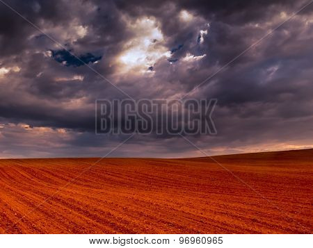 Crop Field And Stormy Sky