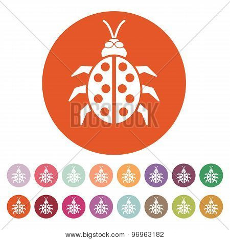 The ladybug icon. Ladybird and bug, beetle symbol. Flat
