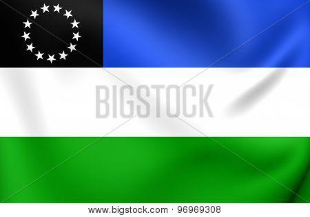 Flag Of Rio Negro Province, Argentina.