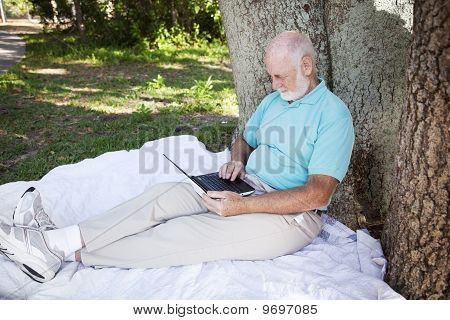 Senior Man In Park With Computer