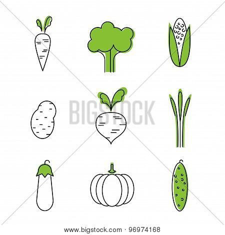 Healthy food card vegetables vegetarians eco-friendly
