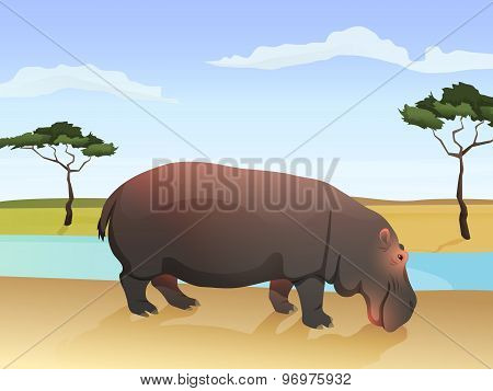 Beautiful wild african animal illustration. Big Hippo standing on the grass with african savannah, w