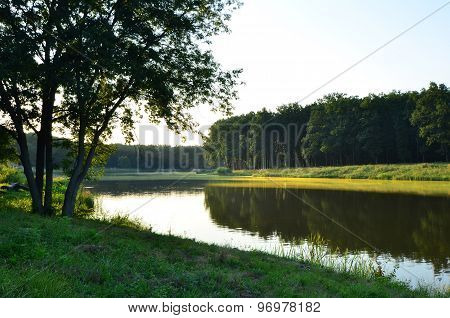Beautiful summer sunset at the river in forest in Ukraine.
