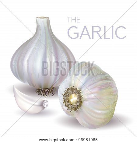 garlic bulb and slice